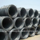 Faible teneur en carbone du fil machine en acier doux 5,5 mm/6,5 mm.