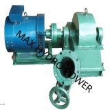 1kw-1000kw de hydroGenerator van de Magneet van de Turbine Permanente (PMG)