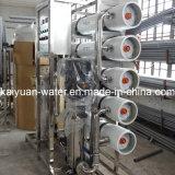 Wasser-Reinigung-Pflanzensystem