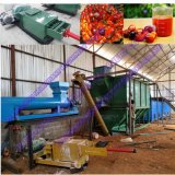 やしフルーツオイルの製粉のプラントの熱い販売の専門の工場完全セット