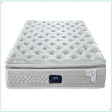 Pocket Sprung, Minitasche, Hotel-Matratze, Latex Mattress-R25