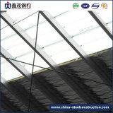 Workshop de aço pré-fabricados na China com a Instalação Rápida (Estrutura de aço)