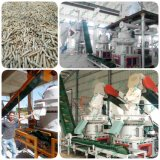 Ce и производственная линия ISO Approved Complete Biomass Wood Pellet