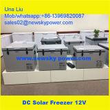 휴대용 차 냉장고 DC 12V 태양 냉장고 냉장고