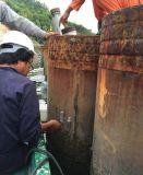 ASTM D4549 높은 긴장 동적인 더미 검사자