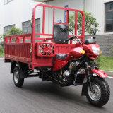 Motor de três veículos com rodas