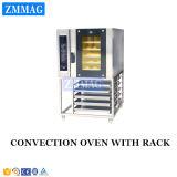 Peças de forno de convecção elétricas com sensor de chama rotativo de forno profissional (ZMR-5D)