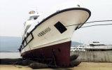 Aufblasbarer Marineheizschlauch für die startende und ausbauende Lieferung