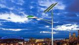 Indicatore luminoso di via solare del LED