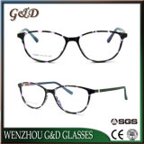 Het nieuwe Populaire Tr90 Optische Frame T6006 van het Oogglas van Eyewear van Glazen