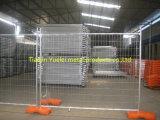 Heißes galvanisiertes temporäres fechtendes Panel für Verkauf