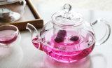 Cristal juego de té / Tetera / Utensilios de cocina