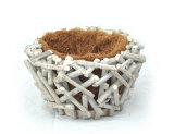 Fabricante White Rattan Flower Pot com revestimento Coco