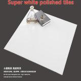 Самая лучшая продавая цены лоска продуктов 600X600 плитка фарфора высокого дешевого супер белая Polished (SW601B)