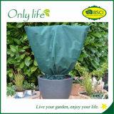 Protection UV Onlylife Resisitant froid Garden Super grande couverture végétale