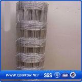 Rete fissa d'acciaio/rete fissa rivestita del collegare Mesh/PVC rete fissa del bestiame