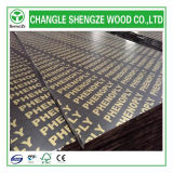 8mm~21mm Black /Brown Printed Logo Shuttering Plywood