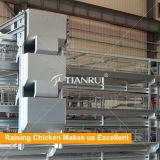 Sistema d'alimentazione automatico del migliore pollame durevole di configurazione di disegno di Tianrui