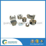 Rair Earths Professional AlNiCo Magnet for Motors
