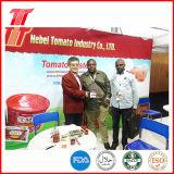 Inserimento di pomodoro inscatolato 400g organico e sano dell'alta qualità