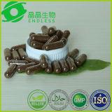 Extracto de alta calidad Ganoderma Lucidum Reishi Extracto de cápsula de extracto