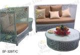 Jogos ao ar livre do sofá, mobília do Rattan do pátio, jogos do sofá do jardim (SF-329)
