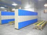 ABS Plastic Storage Locker für Club