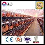 Nueva casa de pollo material china de la resistencia del temblor de la tierra 2017
