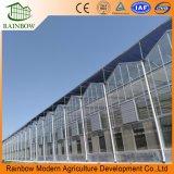 Arco iris de alta calidad transparente de vidrio agrícola invernadero