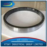 Fabricado na China Largetb NBR a vedação de óleo grande tamanho (540*590*25mm)