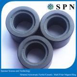 Magneet Multipoles van de Ring van het ferriet de Isotrope voor het Stappen Motor