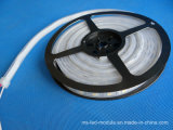 SMD 5050 CC12V IP67 tira de LED flexible