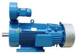 Motore a corrente alternata A tre fasi per le gru elettriche