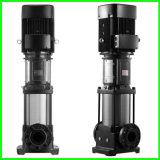 Vertikale Wasser-Pumpe des Edelstahl-110V