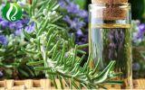 Óleo essencial de alecrim para produtos cosméticos