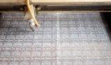 O couro etiqueta a máquina de estaca do laser com transporte