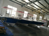De Verkoop van de Boot van de Glasvezel van de Fabrikanten van de Vissersboot van Liya 25FT
