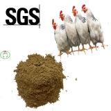 La volaille alimentent la farine de poisson à haute valeur protéique