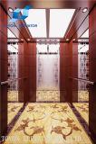 Elevador de Toyon e elevador Home para o passageiro e residencial sem quarto