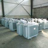 11kv 3 Transformator van de Distributie van de Macht van de Fase de Olie Ondergedompelde