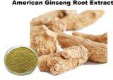 Amerikanisches Ginseng-Auszug Ginsenosides 5% - 50%