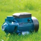 Qualitäts-ZusatzTrinkwasser-Pumpe für Qb Pumpe