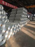 Rete metallica del pollo/rete metallica esagonale galvanizzata ricoperta PVC