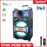 Temeisheng Feiyang/12 pouces de haut-parleur Bluetooth Rechargeable omnidirectionnel avec LED Qx-1212