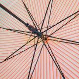カスタム大きい縞デザインPoeまっすぐに透過明確な傘