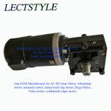 12V 320W 50-60rpm elektrischer Endlosschrauben-Gang-Verkleinerungs-Motor auf Lehm-Ziel-Blockiermaschine