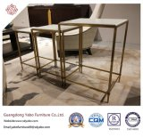 Lobby Wooden Coffee Table (8653-1)를 가진 Commerical Hotel Furniture