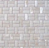 Shell blanco 15*30 del agua dulce en mosaico del acoplamiento
