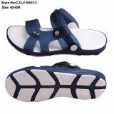 Nouvelle arrivée sandales actuelle, les sandales avec TPE écologique Upper
