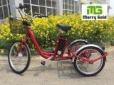 triciclo eléctrico del cargo de la rueda del motor tres del eje 250W